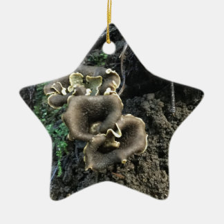 Flowering Mushrooms Ceramic Star Ornament