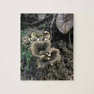 Flowering Mushrooms Jigsaw Puzzle