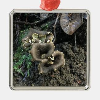 Flowering Mushrooms Metal Ornament