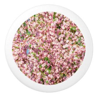 Flowering Plum Ceramic Knob
