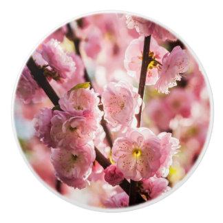 Flowering Plum - Pink Paradize Ceramic Knob