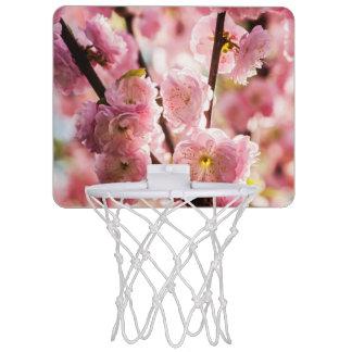 Flowering Plum - Pink Paradize Mini Basketball Hoop