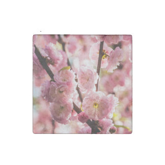 Flowering Plum - Pink Paradize Stone Magnets