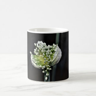 Flowering Spring Onion Coffee Mug