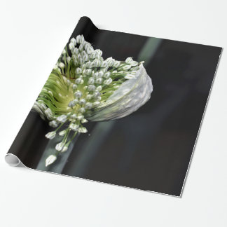 Flowering Spring Onion Wrapping Paper