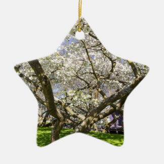Flowering trees with white blossom in spring ceramic star ornament