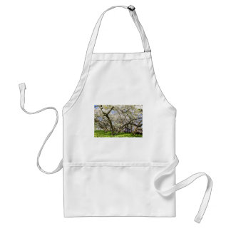 Flowering trees with white blossom in spring standard apron