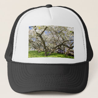 Flowering trees with white blossom in spring trucker hat