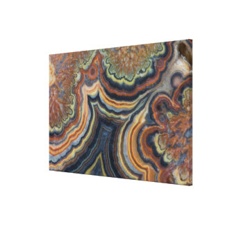 Flowering tube onyx canvas print