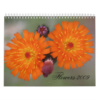 Flowers 2009 wall calendars