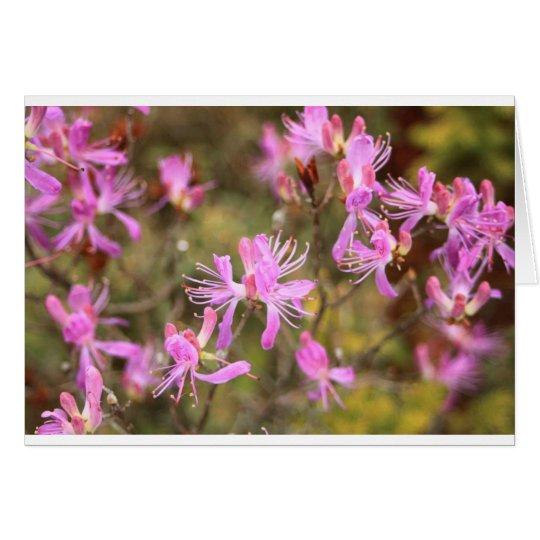 flowers 9.jpg card