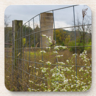 Flowers And A Silo Coaster