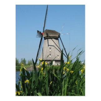 Flowers and Dutch Windmill Postcard