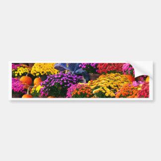 Flowers and pumpkins bumper sticker