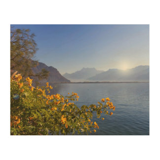Flowers at Geneva lake, Montreux, Switzerland Wood Print