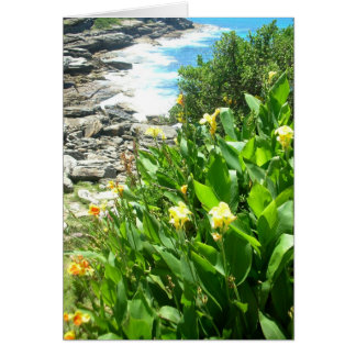 Flowers at Tamarama Cove Card