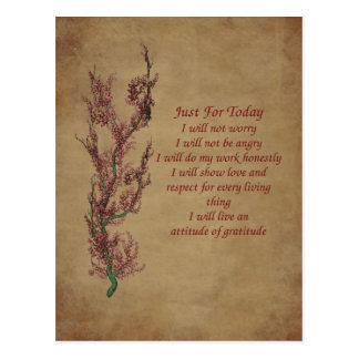 Flowers Attitude Prayer Inspirational Postcard