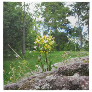 Flowers between the rocks napkin