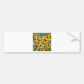 Flowers Black eyed susan's Bumper Sticker