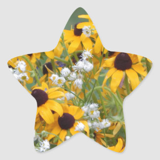 Flowers Black eyed susan's Star Sticker