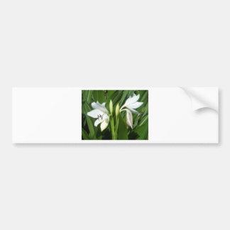 Flowers. Bumper Sticker