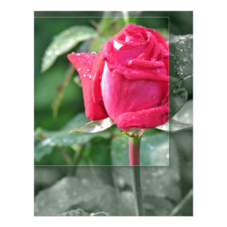 Flowers by the Lake - Red Rose Bud Customized Letterhead