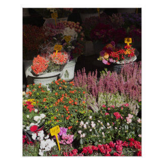 flowers displayed for sale in the Campo de' Poster