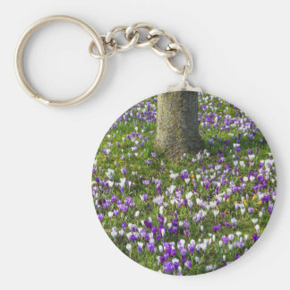 Flowers field crocuses in spring grass with tree basic round button keychain
