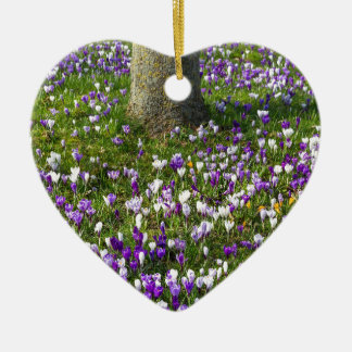 Flowers field crocuses in spring grass with tree ceramic heart ornament