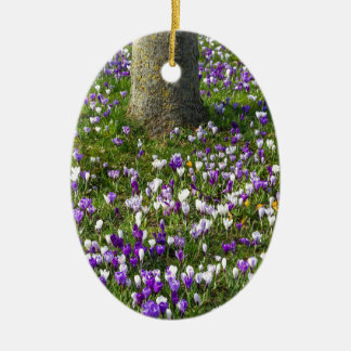 Flowers field crocuses in spring grass with tree ceramic oval ornament