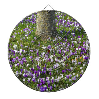 Flowers field crocuses in spring grass with tree dartboard