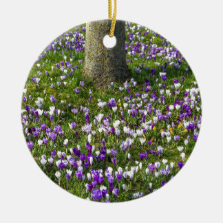 Flowers field crocuses in spring grass with tree round ceramic ornament