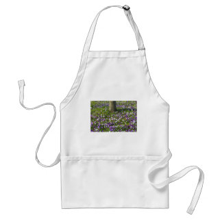 Flowers field crocuses in spring grass with tree standard apron