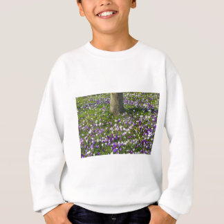 Flowers field crocuses in spring grass with tree sweatshirt