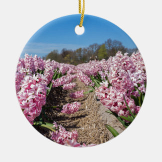 Flowers field with pink hyacinths in Holland Ceramic Ornament