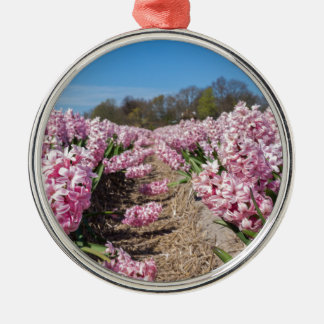 Flowers field with pink hyacinths in Holland Metal Ornament