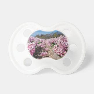 Flowers field with pink hyacinths in Holland Pacifier
