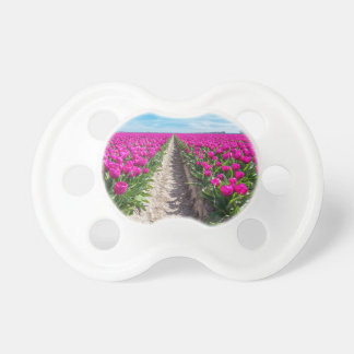 Flowers field with purple tulips and path baby pacifier
