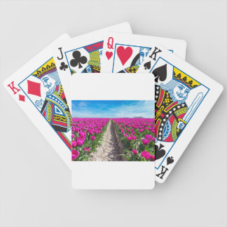 Flowers field with purple tulips and path bicycle playing cards