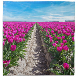 Flowers field with purple tulips and path napkin