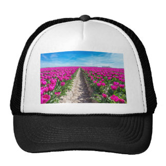 Flowers field with purple tulips and path trucker hat