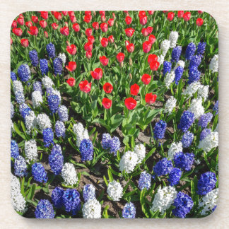 Flowers field with red blue tulips and hyacinths beverage coasters