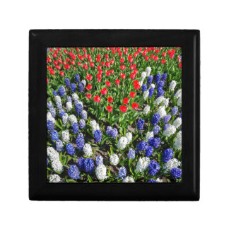 Flowers field with red blue tulips and hyacinths gift box