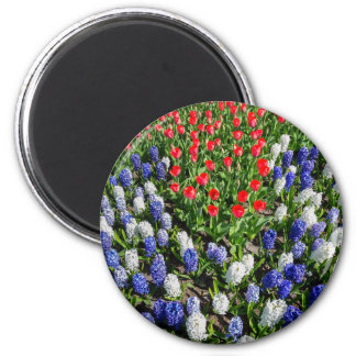 Flowers field with red blue tulips and hyacinths magnet