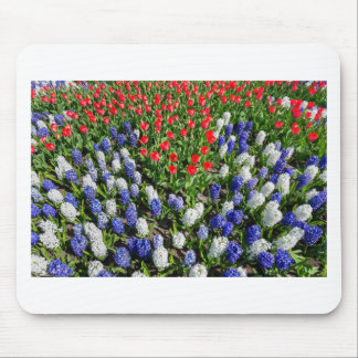 Flowers field with red blue tulips and hyacinths mouse pad