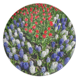 Flowers field with red blue tulips and hyacinths plate