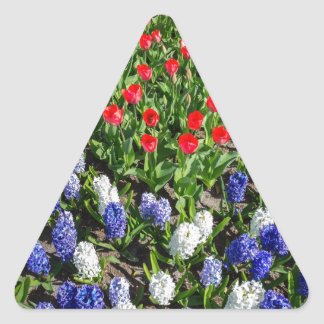 Flowers field with red blue tulips and hyacinths triangle sticker