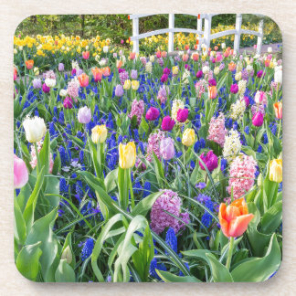 Flowers field with tulips hyacinths and bridge beverage coaster