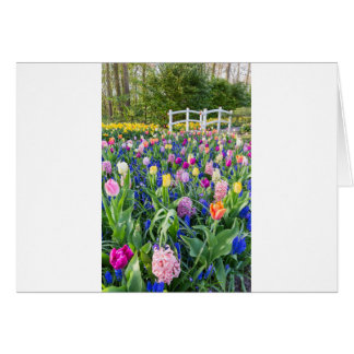 Flowers field with tulips hyacinths and bridge card