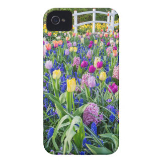 Flowers field with tulips hyacinths and bridge iPhone 4 case